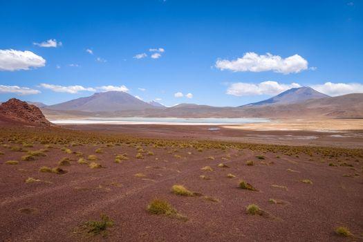 Laguna Honda in sud Lipez Altiplano reserva, Bolivia