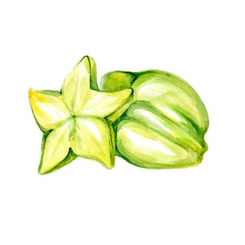 Carambola. Watercolor Starfruit on a White Background. Series of Food for Cooking