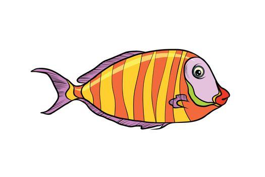 Isolated cichlid aquarium fish