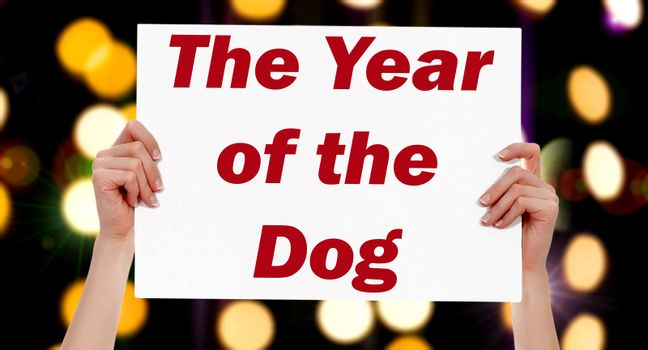 The Year of the Dog. Female hands holding a placard with abstract lights bokeh background