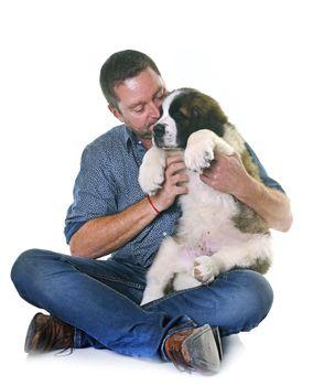 puppy saint bernard and man