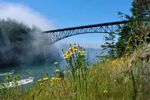 Scenic view of Deception Pass Bridge in summer day with fog and wildflowes on cliff.