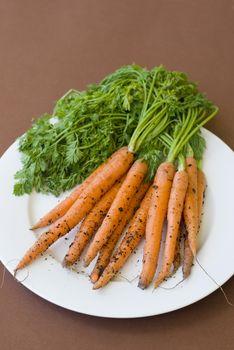 Plate of freshly harvested carrots