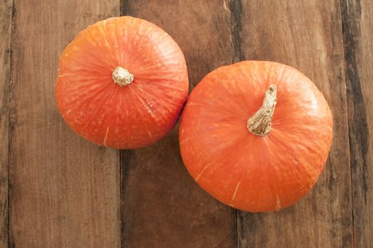 Top down view on small orange pumpkins