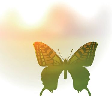 Vector illustration of a butterfly in the style of double exposure. Greetings to spring or summer in light tones