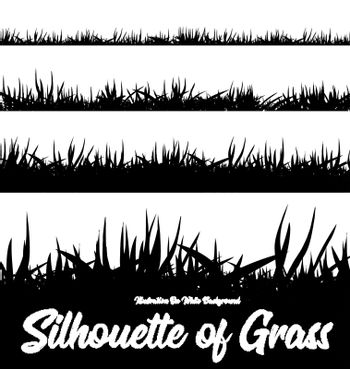 Silhouette of grass of different heights. Vector illustration on white