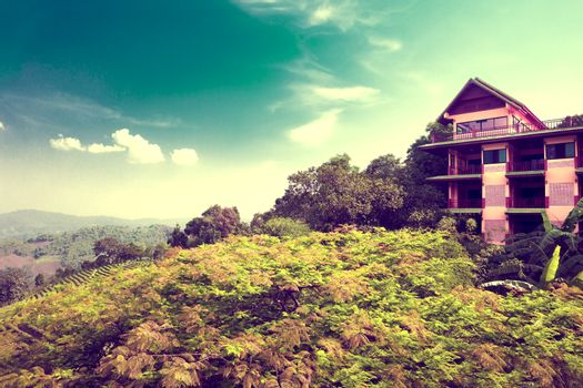 Exotic travels and adventures .Thailand trip.Chiang Mai landmark