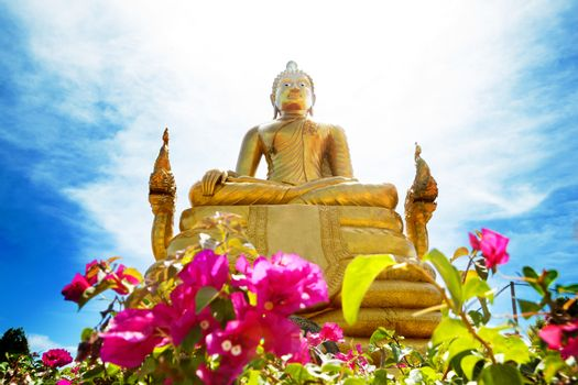 Exotic travels and adventures .Thailand trip.Buddha and landmark