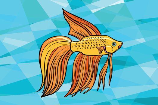 Cockerel aquarium fish
