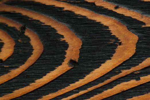 Natural, beautiful wood background