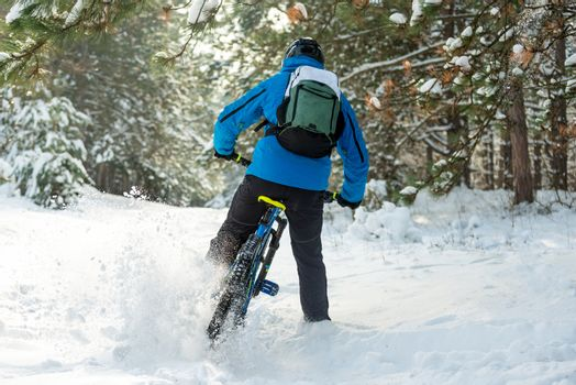 Cyclist in Blue Drifting on Mountain Bike in Beautiful Winter Forest. Extreme Sport and Enduro Biking Concept.