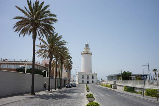 Tall palm trees in front a white lighthouse at Malagueta beach in Malaga, Spain, Europe on a bright summer day with clear skies