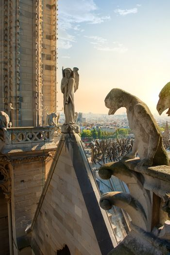 Chimeras on cathedral