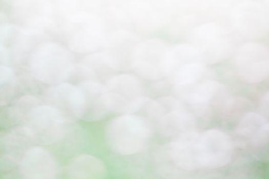 Green Abstract Backdrop