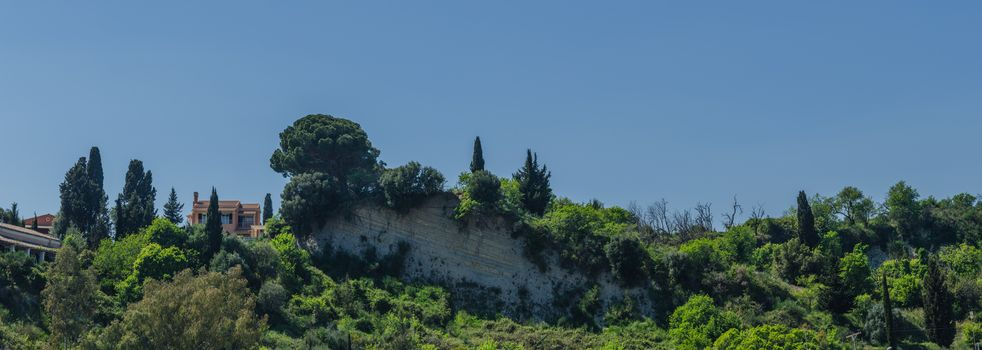 trees on rocks in Corfu panorama view