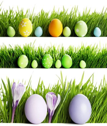 Set of easter eggs in fresh green grass isolated on white background