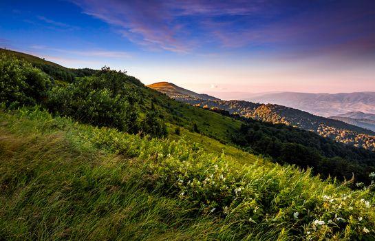 grassy meadow on a hillside at beautiful reddish sunrise