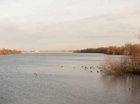 coast flat water surface reservoir scene dam in distance; essex; england; uk