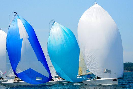 Sailboat Racing on Whidbey Island, WA