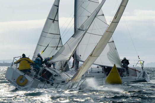Sailboat Racing on Shilshole Bay