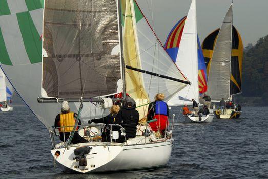 Sailboat Racing
