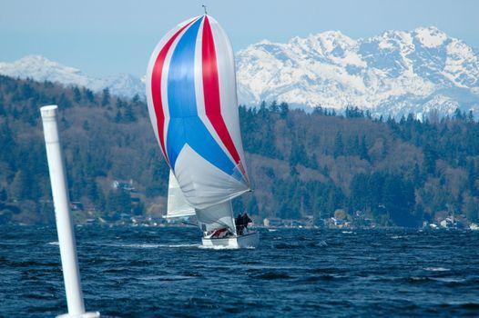 Sailboat Racing on Puget Sound