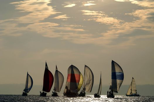 Sailboat Racing in Late Afternoon