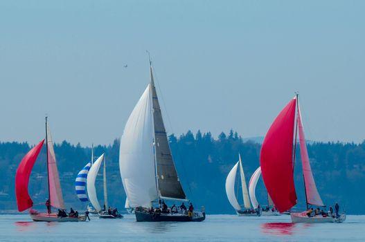 Sailboat Racing on Elliott Bay