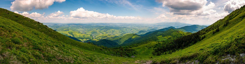 grassy slopes of Pikui mountain