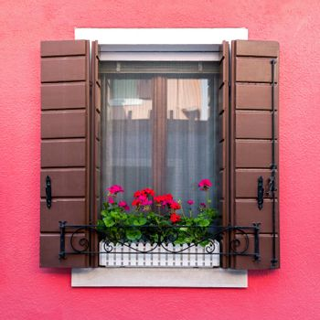 Colorful residential window with blooming flowers in venetian island of Burano, Italy