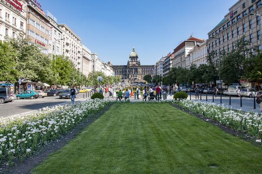 PRAGUE - MAY 05: the famous St Venceslao square and tourists that walk on it on May 05, 2011 in Prague, Czech Republic