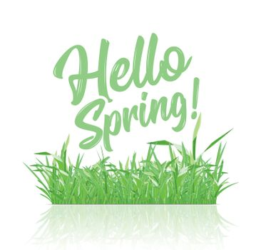 Text message hello spring, on a background of spring grass on a white background. Vector ilustration
