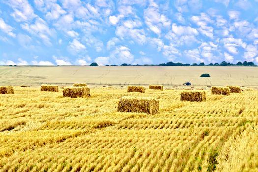 Bales of straw rectangular