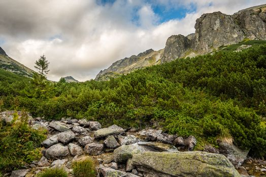 Mountain Landscape on Cloudy Day