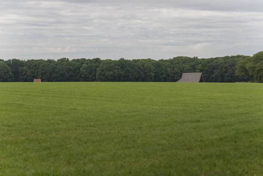 The characteristic half-open farmlands in the Achterhoek near Winterswijk in the Netherlands