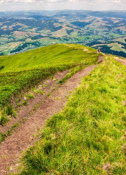 foot path down the grassy hillside