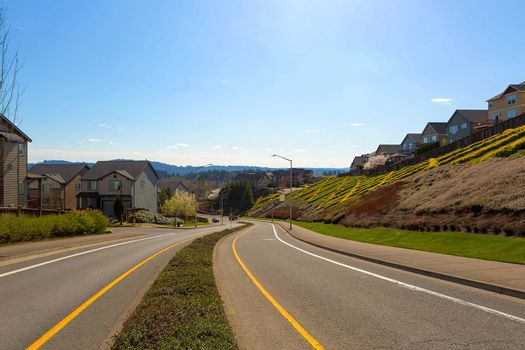 North American Suburban Neighborhood Street
