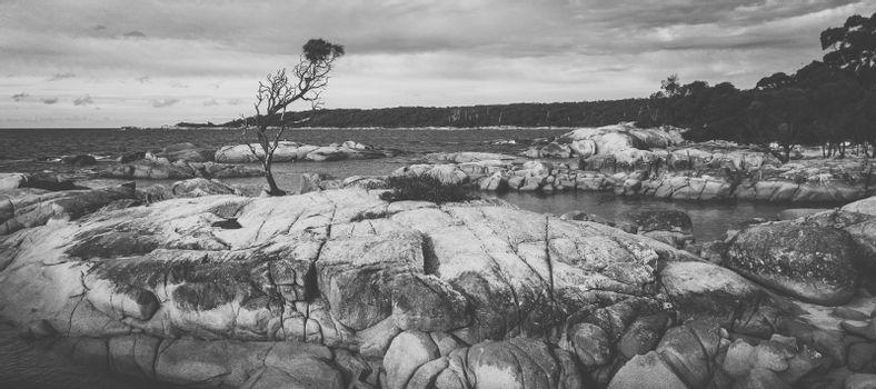 Bay Of Fires, Binalong Bay during the day in Tasmania.
