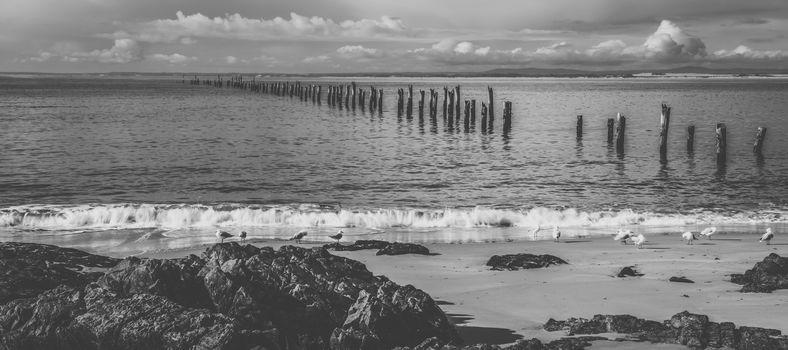 Beautiful beach at Bridport, Tasmania, Australia during the day.