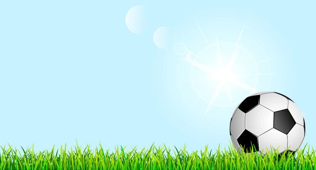Banner with soccer ball and grass lawn. Soccer ball on green grass against the blue sky.
