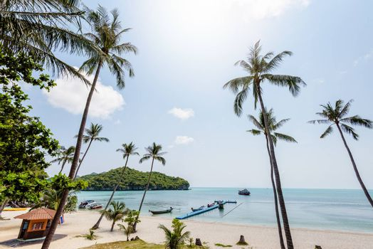 Beautiful natural landscape coconut trees on the beach and the sea at Ko Wua Ta Lap island. Under the summer sky in Mu Ko Ang Thong National Marine Park, Surat Thani province, Thailand