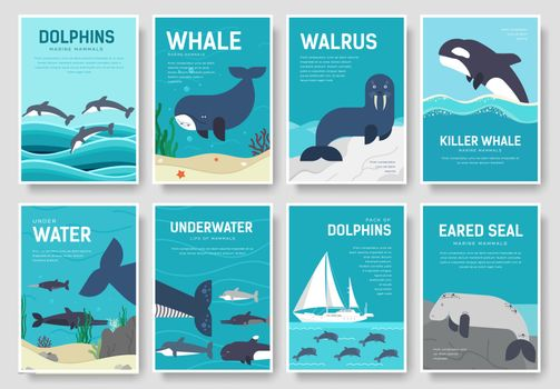 Set of Sea mammals pattern concept. Art animal, magazine, book, poster, abstract, banners, element. Vector fish in ocean life package greeting card or invitation brochure design.