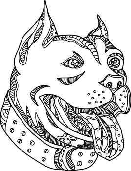 Pit Bull Head Doodle Art