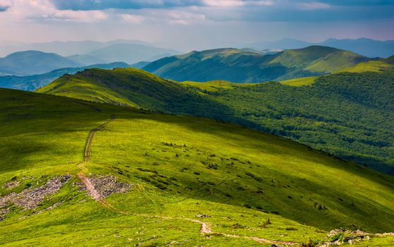 path through grassy meadow on hillside