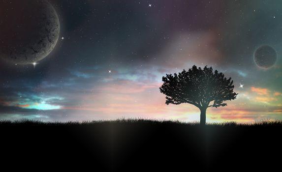 Lonely Tree in Dark Night
