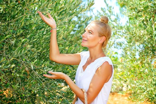 Cute farmer girl enjoying harvest of olives, walking in the garden in bright sunny autumn day, cultivation of organic food, healthy lifestyle