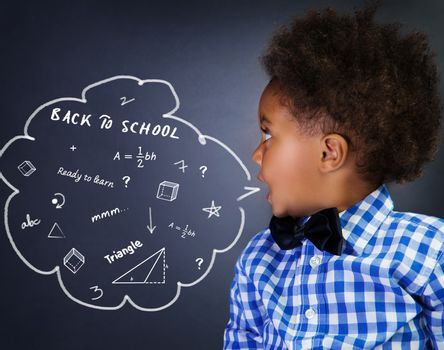 Smart schoolboy portrait