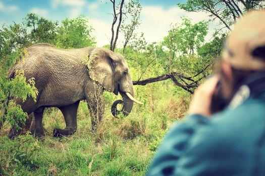 Photographer taking safari pictures