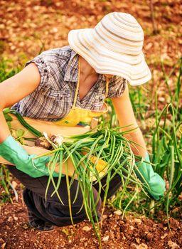 Farmer woman in the garden