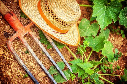 Farmer tools in the garden